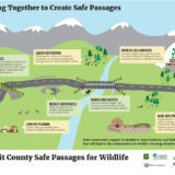 Working Together to Create Safe Passages Poster