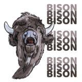 Bison, Bison, Bison