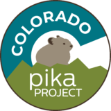 Colorado Pika Project logo, created by Chris Talbot-Heindl, 2021