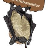 Bat Ambassador with Colorado Bat Watch sticker, created by Chris Talbot-Heindl, 2020